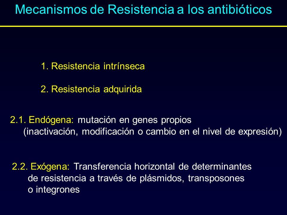 Mecanismos de Resistencia a los antibióticos 1. Resistencia intrínseca 2. Resistencia adquirida 2.1. Endógena: mutación en genes propios (inactivación