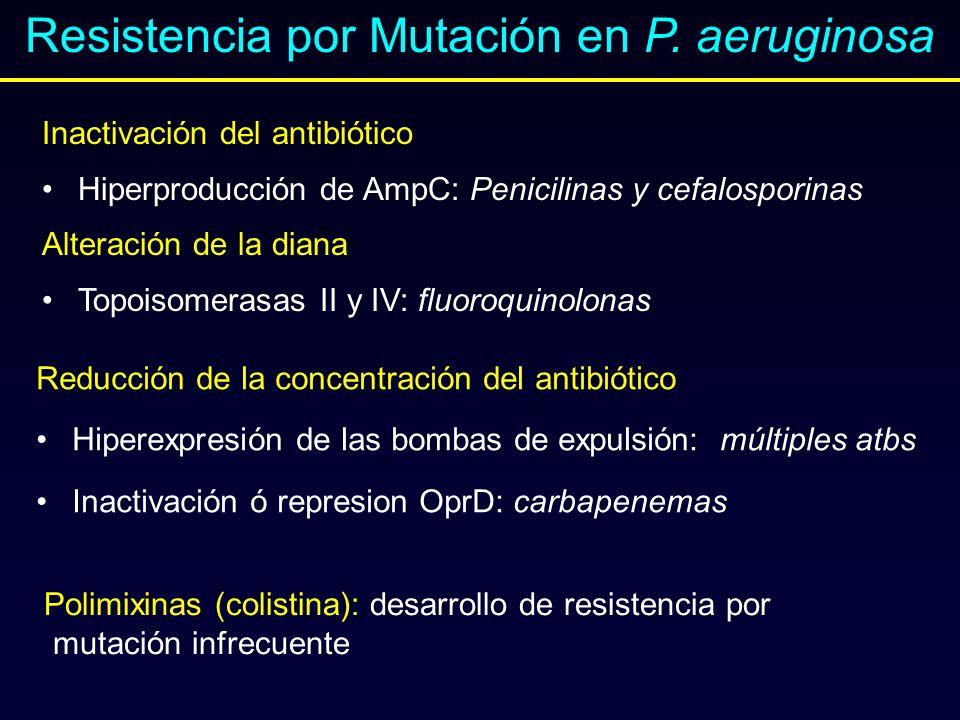 Inactivación del antibiótico Hiperproducción de AmpC: Penicilinas y cefalosporinas Alteración de la diana: Topoisomerasas II y IV: fluoroquinolonas. R