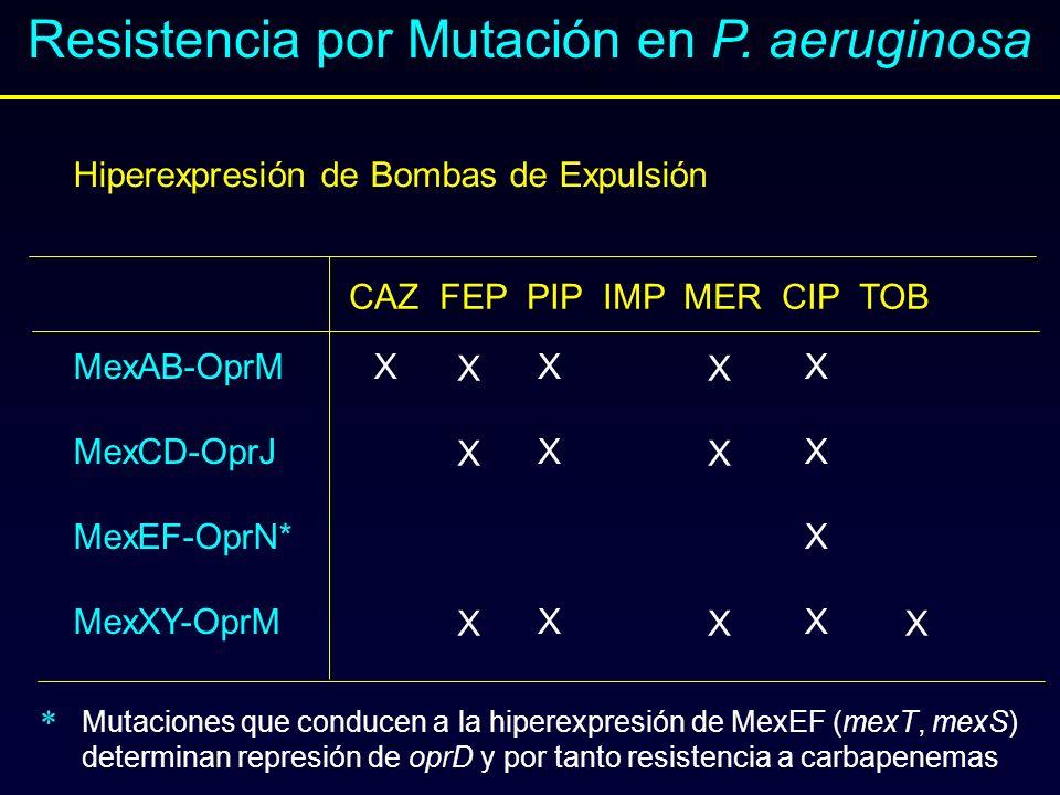 Resistencia por Mutación en P. aeruginosa Hiperexpresión de Bombas de Expulsión MexAB-OprM MexCD-OprJ MexEF-OprN* MexXY-OprM CAZ FEP PIP IMP MER CIP T