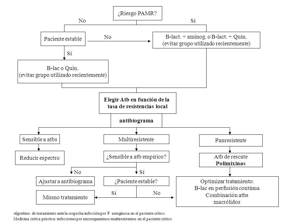 Algoritmo de tratamiento ante la sospecha infección por P. aeruginosa en el paciente crítico. Medicina crítica práctica: infecciones por microrganismo