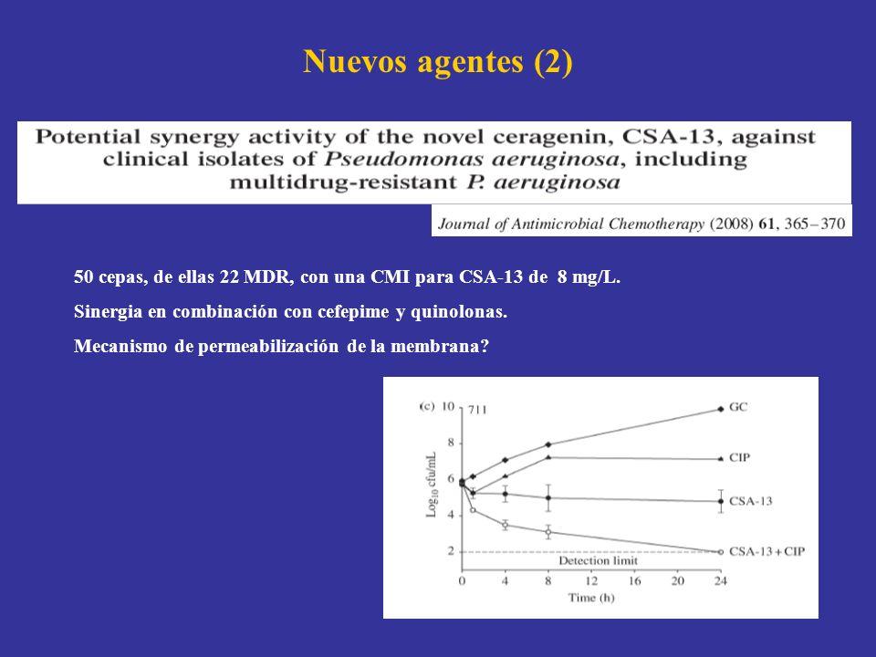 Nuevos agentes (2) 50 cepas, de ellas 22 MDR, con una CMI para CSA-13 de 8 mg/L. Sinergia en combinación con cefepime y quinolonas. Mecanismo de perme