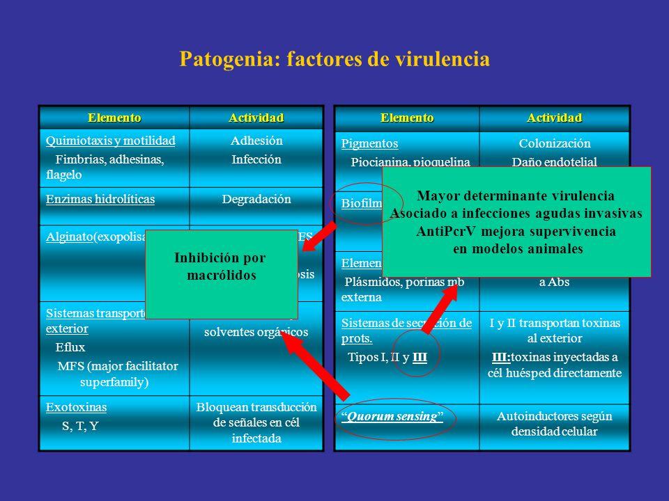 Patogenia: factores de virulencia ElementoActividad Quimiotaxis y motilidad Fimbrias, adhesinas, flagelo Adhesión Infección Enzimas hidrolíticasDegrad