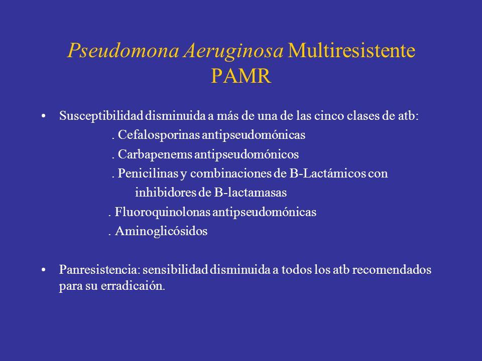 Pseudomona Aeruginosa Multiresistente PAMR Susceptibilidad disminuida a más de una de las cinco clases de atb:. Cefalosporinas antipseudomónicas. Carb