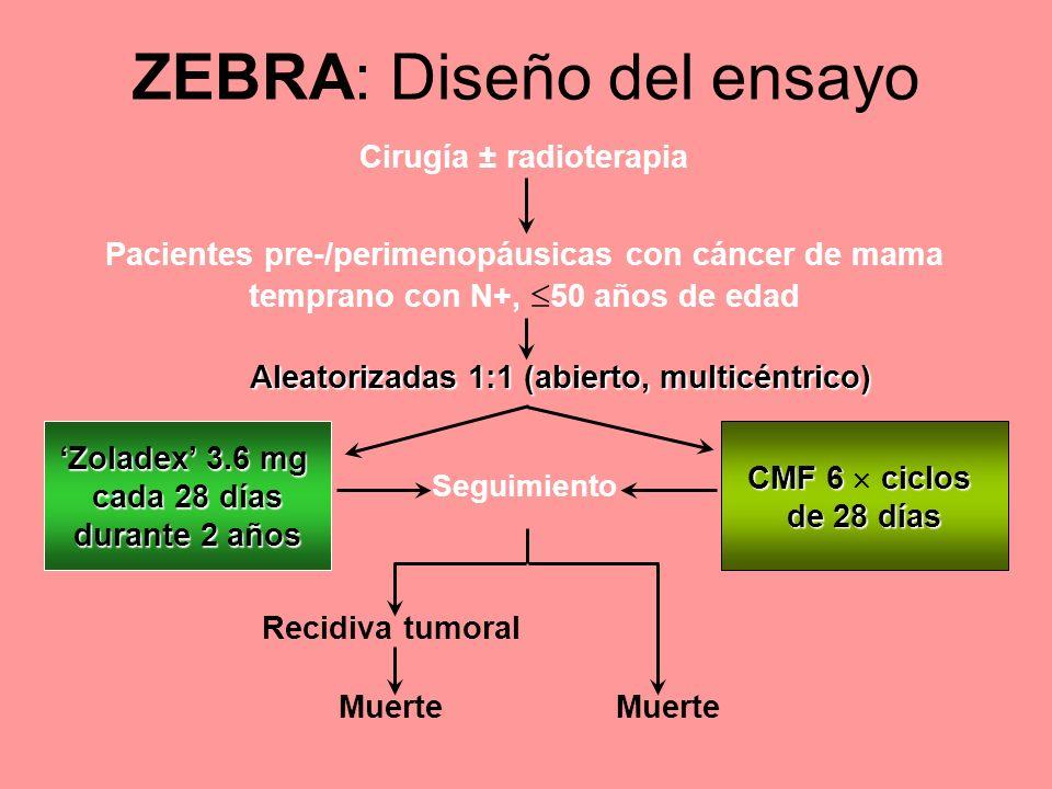 ZEBRA: Diseño del ensayo Cirugía ± radioterapia Zoladex 3.6 mg cada 28 días durante 2 años Pacientes pre-/perimenopáusicas con cáncer de mama temprano