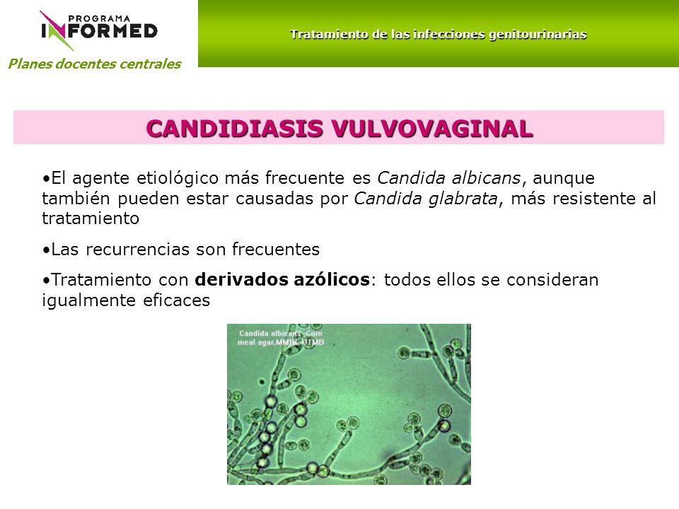 Planes docentes centrales Tratamiento de las infecciones genitourinarias CANDIDIASIS VULVOVAGINAL El agente etiológico más frecuente es Candida albica