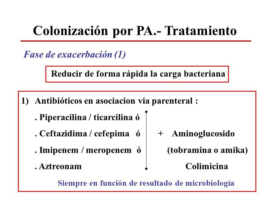Colonización por PA.- Tratamiento Fase de exacerbación (1) Reducir de forma rápida la carga bacteriana 1)Antibióticos en asociacion via parenteral :.