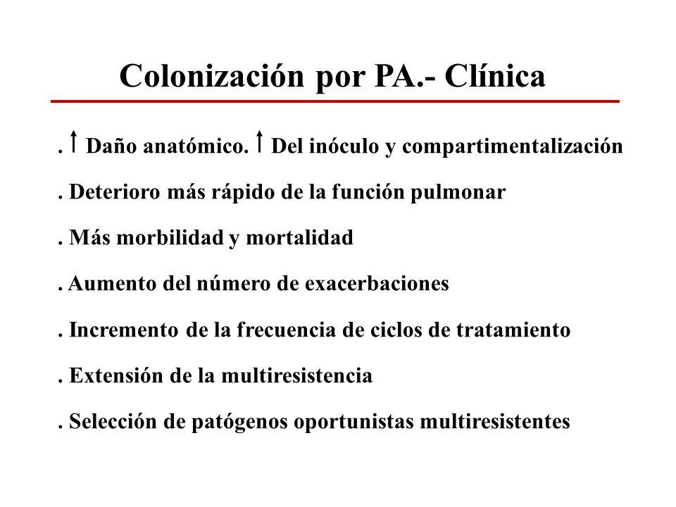 Colonización por PA.- Clínica. Daño anatómico. Del inóculo y compartimentalización. Deterioro más rápido de la función pulmonar. Más morbilidad y mort