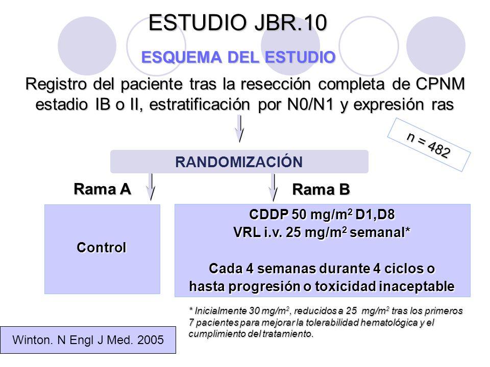 ESTUDIO JBR.10 ESQUEMA DE QUIMIOTERAPIA Ciclo1234 Semana 12345678910111213141516 FármacoDosis Cisplatino 50 mg/m 2 XXXXXXXX Vinorelbina 25 mg/m 2 XXXXXXXXXXXXXXXX Winton.