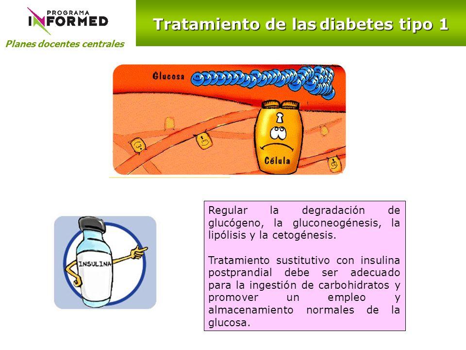 Planes docentes centrales Tratamiento de las diabetes tipo 1 Regular la degradación de glucógeno, la gluconeogénesis, la lipólisis y la cetogénesis. T