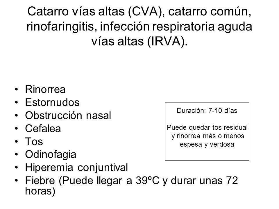 Catarro vías altas (CVA), catarro común, rinofaringitis, infección respiratoria aguda vías altas (IRVA). Rinorrea Estornudos Obstrucción nasal Cefalea