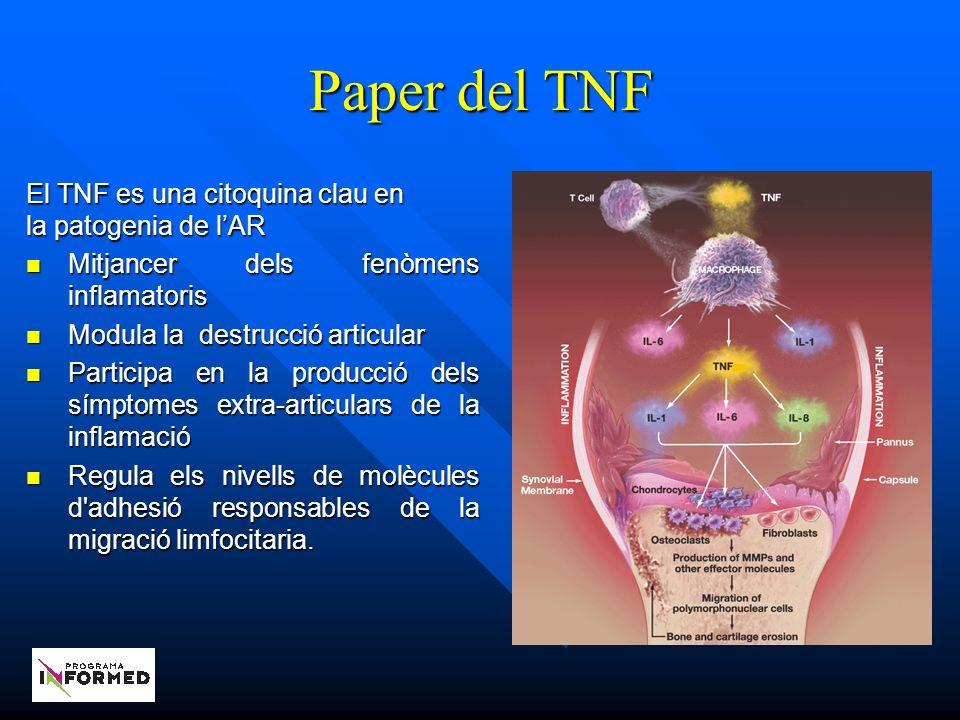 Paper del TNF El TNF es una citoquina clau en la patogenia de lAR Mitjancer dels fenòmens inflamatoris Mitjancer dels fenòmens inflamatoris Modula la destrucció articular Modula la destrucció articular Participa en la producció dels símptomes extra-articulars de la inflamació Participa en la producció dels símptomes extra-articulars de la inflamació Regula els nivells de molècules d adhesió responsables de la migració limfocitaria.