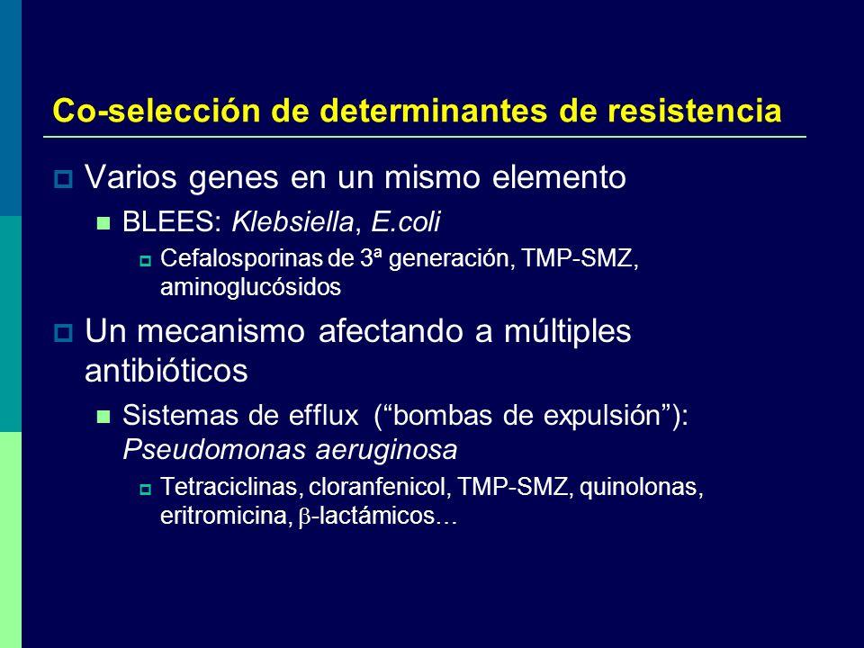 Co-selección de determinantes de resistencia Varios genes en un mismo elemento BLEES: Klebsiella, E.coli Cefalosporinas de 3ª generación, TMP-SMZ, ami