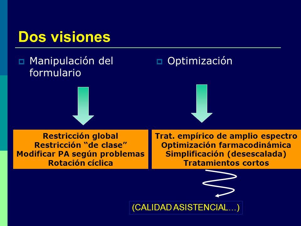Dos visiones Manipulación del formulario Optimización Restricción global Restricción de clase Modificar PA según problemas Rotación cíclica Trat. empí