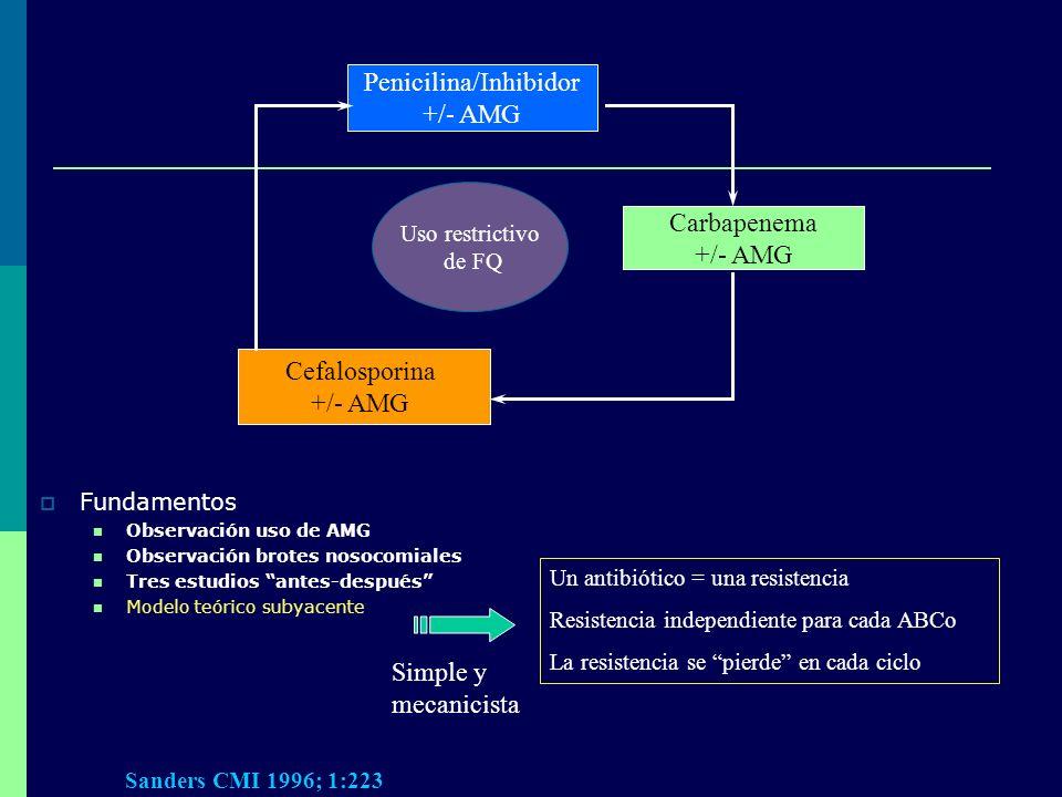 Fundamentos Observación uso de AMG Observación brotes nosocomiales Tres estudios antes-después Modelo teórico subyacente Carbapenema +/- AMG Penicilin