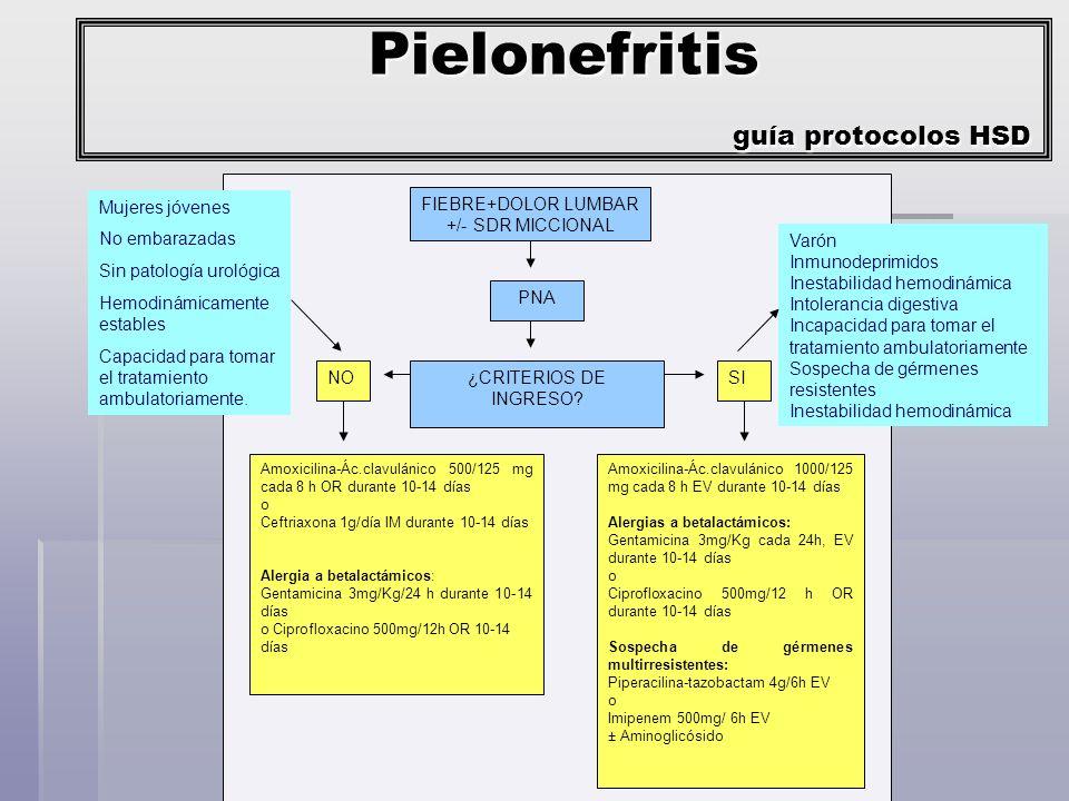 Microorganismos E coli E coli K.pneumoniae K.