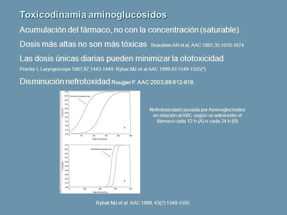 Toxicodinamia aminoglucósidos Acumulación del fármaco, no con la concentración (saturable). Dosis más altas no son más tóxicas Beaubien AR et al, AAC