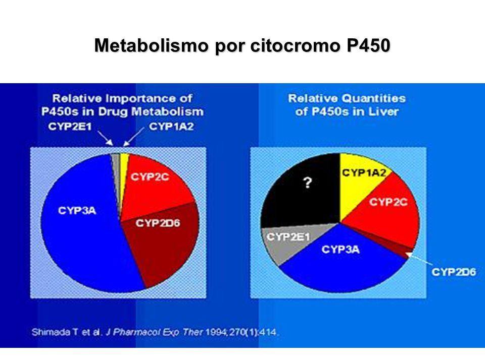 Metabolismo por citocromo P450