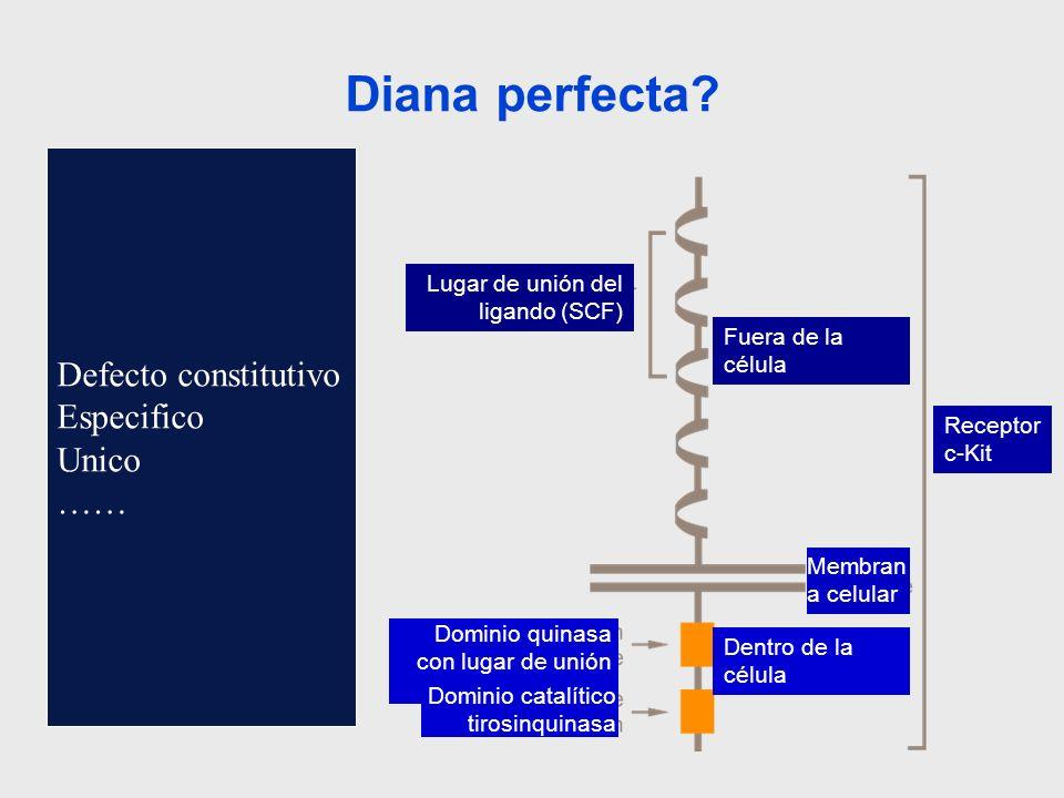 Defecto constitutivo Especifico Unico …… Diana perfecta? Lugar de unión del ligando (SCF) Fuera de la célula Receptor c-Kit Membran a celular Dentro d