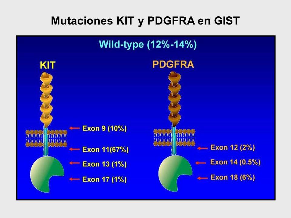 Mutaciones KIT y PDGFRA en GIST