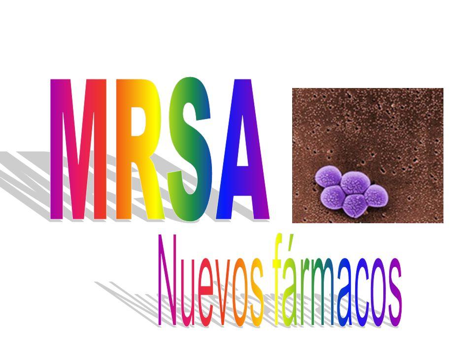Linezolid(2): Primera elección en: VISA, VRSA Segunda elección: MRSA (primera en determinadas situaciones) Efectos adversos : – Sme serotoninergico.