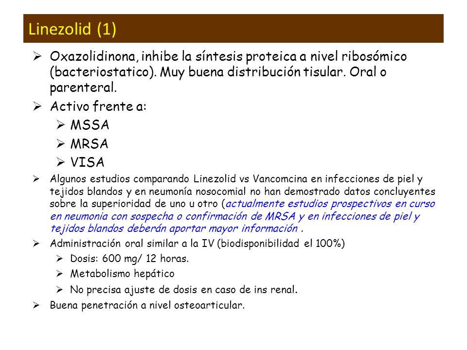 Linezolid (1) Oxazolidinona, inhibe la síntesis proteica a nivel ribosómico (bacteriostatico). Muy buena distribución tisular. Oral o parenteral. Acti