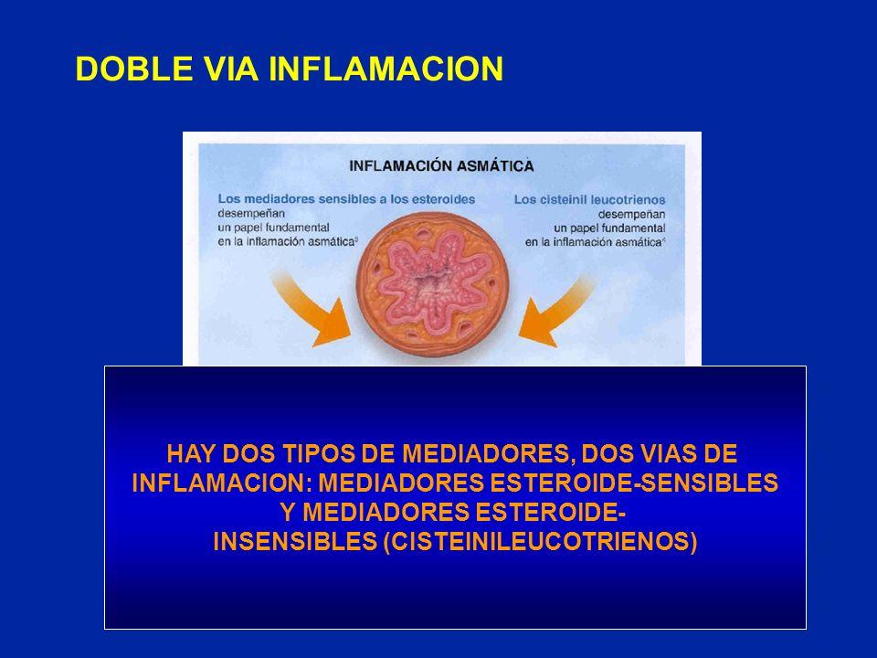 DOBLE VIA INFLAMACION HAY DOS TIPOS DE MEDIADORES, DOS VIAS DE INFLAMACION: MEDIADORES ESTEROIDE-SENSIBLES Y MEDIADORES ESTEROIDE- INSENSIBLES (CISTEI
