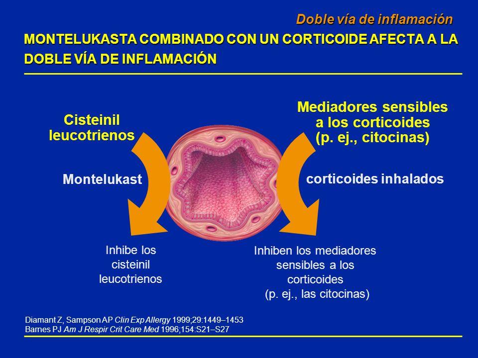 Inhiben los mediadores sensibles a los corticoides (p. ej., las citocinas) Montelukast Doble vía de inflamación MONTELUKASTA COMBINADO CON UN CORTICOI