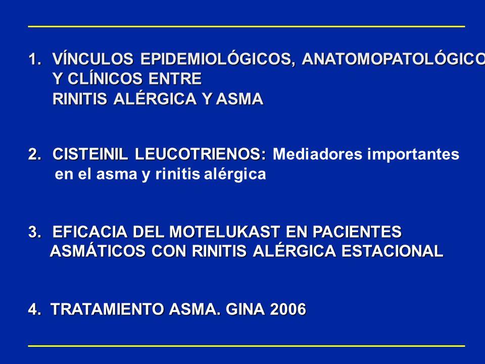RESULTADOS: RESULTADOS: Montelukast mejoró las evaluaciones globales de la situación clínica y la calidad de vida * Montelukast mejoró significativamente las puntuaciones de la calidad de vida con rinoconjuntivitis con respecto a placebo (p<0,01) * Montelukast mejoró significativamente la evaluación global de la rinitis alérgica realizada por el paciente (2,39 1,52 vs 2,77 1,58; p< 0,001) y por el médico (2,41 1,42 vs 2,76 1,46; p< 0,001) 543210543210 Puntuación del tratamiento (media±DE) Médicos Pacientes 2,77 2,39 2,76 2,41 Placebo (n=416) Montelukast (n=415) Evaluaciones globales de la rinitis alérgica* p 0,001