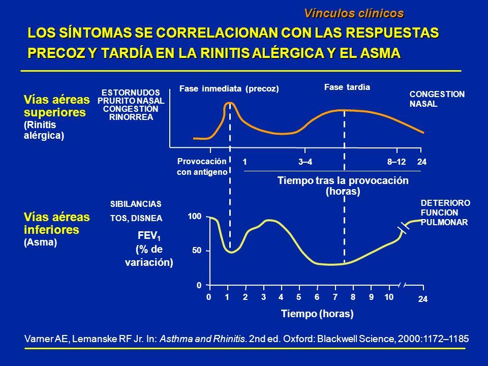 Prevalencia de la hiperreactividad bronquial (Definida por dosis de metacolina que produce una reducción del 20% del FEV1) Vínculos clínicos entre la rinitis alérgica y el asma LOS PACIENTES CON RINITIS ALÉRGICA EXPERIMENTAN UN AUMENTO DE LA HIPERREACTIVIDAD BRONQUIAL 27 pacientes con rinitis alérgica no asmática.