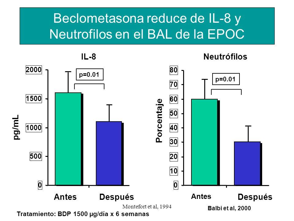 Montefort et al, 1994 0 500 1000 1500 2000 AntesDespués pg/mL Beclometasona reduce de IL-8 y Neutrofilos en el BAL de la EPOC 0 10 20 30 40 50 60 70 8
