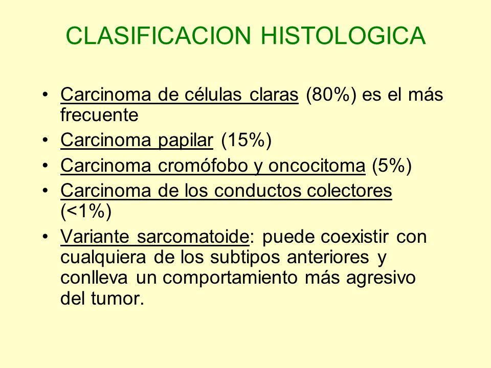 CLASIFICACION HISTOLOGICA Carcinoma de células claras (80%) es el más frecuente Carcinoma papilar (15%) Carcinoma cromófobo y oncocitoma (5%) Carcinom