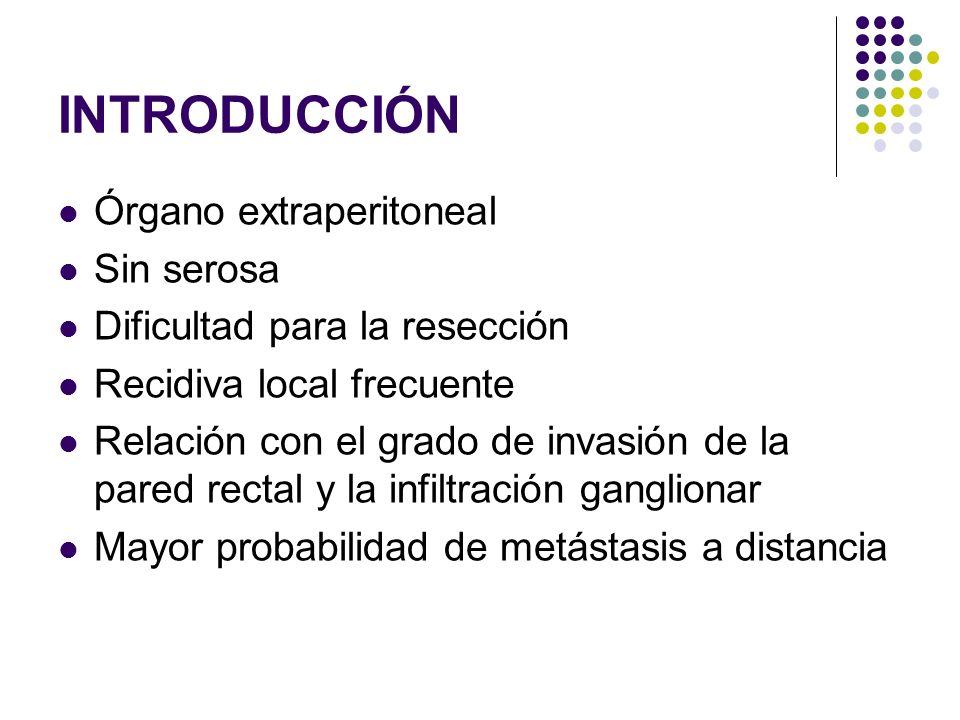 INTRODUCCIÓN Órgano extraperitoneal Sin serosa Dificultad para la resección Recidiva local frecuente Relación con el grado de invasión de la pared rec