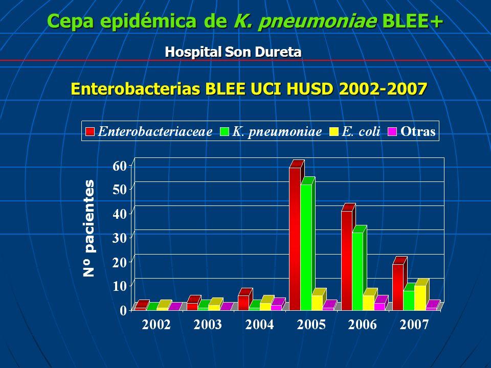 Cepa epidémica de K. pneumoniae BLEE+ Hospital Son Dureta Enterobacterias BLEE UCI HUSD 2002-2007 Nº pacientes