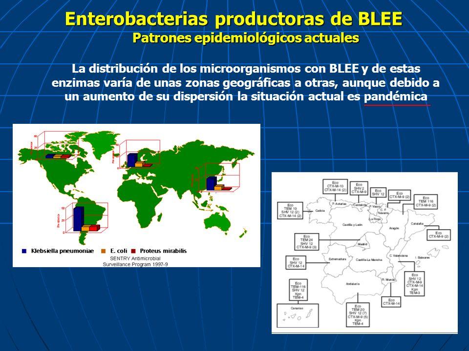 Enterobacterias productoras de BLEE La distribución de los microorganismos con BLEE y de estas enzimas varía de unas zonas geográficas a otras, aunque