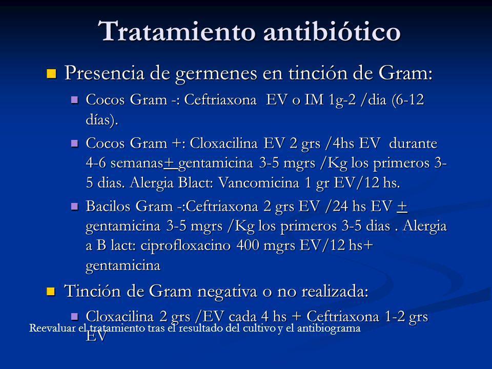 Tratamiento antibiótico Presencia de germenes en tinción de Gram: Presencia de germenes en tinción de Gram: Cocos Gram -: Ceftriaxona EV o IM 1g-2 /di