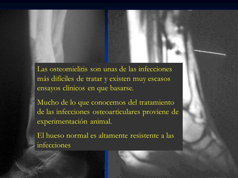 Porcentaje de infección según tipo de fractura Tipo Fractura % Infección % Infección con AB TIPO I 0 - 2% 2% 5%* TIPO II 2 - 7% 2 - 7% 9%* TIPO III 7 - 50% 2 - 25% 34%* TIPO III A 7%2% TIPO III B 10 – 50% 2 – 7% TIPO III C 25 – 50% 10 – 25% Adaptado de Gustilo RB.
