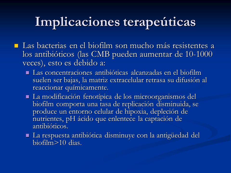 Implicaciones terapeúticas Las bacterias en el biofilm son mucho más resistentes a los antibióticos (las CMB pueden aumentar de 10-1000 veces), esto e