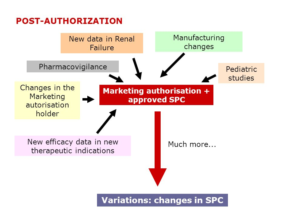Marketing authorisation + approved SPC Pharmacovigilance New efficacy data in new therapeutic indications Manufacturing changes Much more... Pediatric