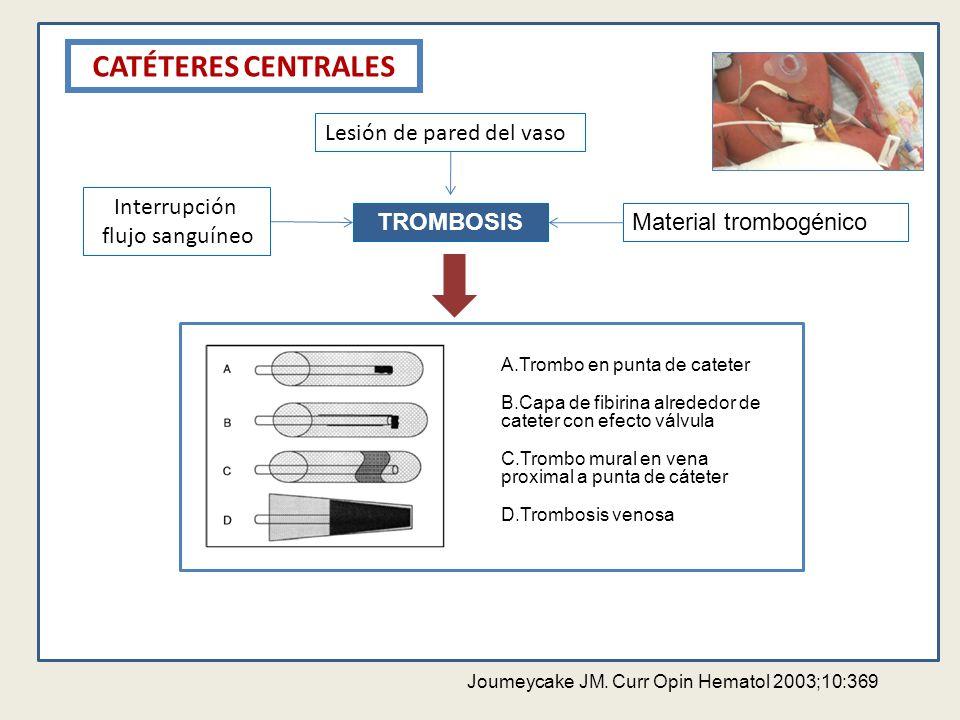 CATÉTERES CENTRALES TROMBOSIS Interrupción flujo sanguíneo Lesión de pared del vaso Material trombogénico Joumeycake JM. Curr Opin Hematol 2003;10:369