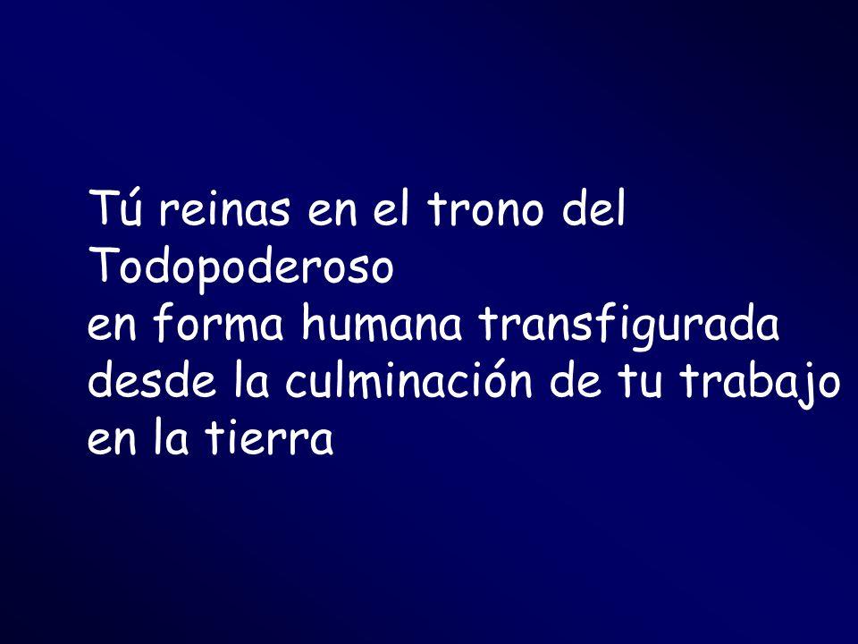 Tú reinas en el trono del Todopoderoso en forma humana transfigurada desde la culminación de tu trabajo en la tierra