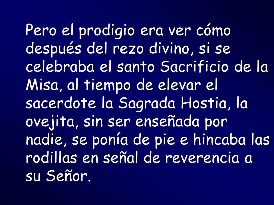 Pero el prodigio era ver cómo después del rezo divino, si se celebraba el santo Sacrificio de la Misa, al tiempo de elevar el sacerdote la Sagrada Hos