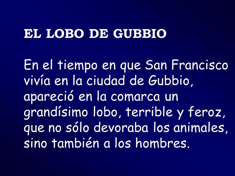 EL LOBO DE GUBBIO En el tiempo en que San Francisco vivía en la ciudad de Gubbio, apareció en la comarca un grandísimo lobo, terrible y feroz, que no