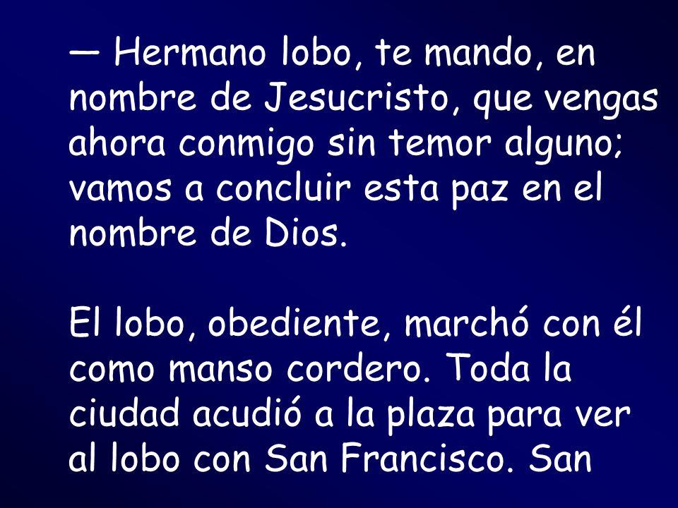 Hermano lobo, te mando, en nombre de Jesucristo, que vengas ahora conmigo sin temor alguno; vamos a concluir esta paz en el nombre de Dios. El lobo, o