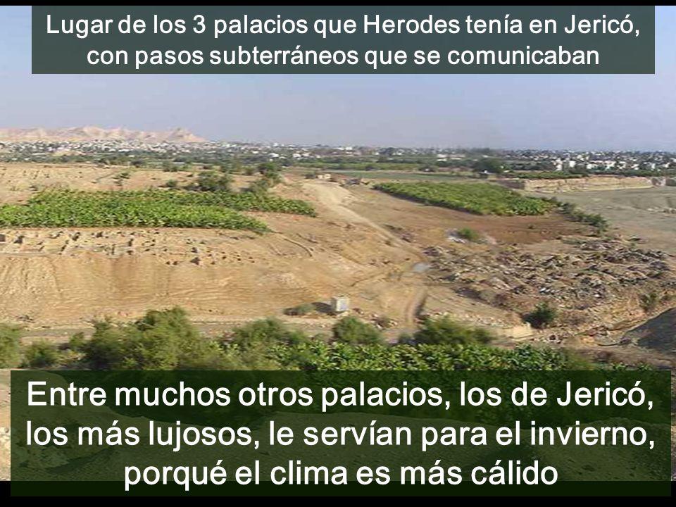 Lugar de los 3 palacios que Herodes tenía en Jericó, con pasos subterráneos que se comunicaban Entre muchos otros palacios, los de Jericó, los más lujosos, le servían para el invierno, porqué el clima es más cálido