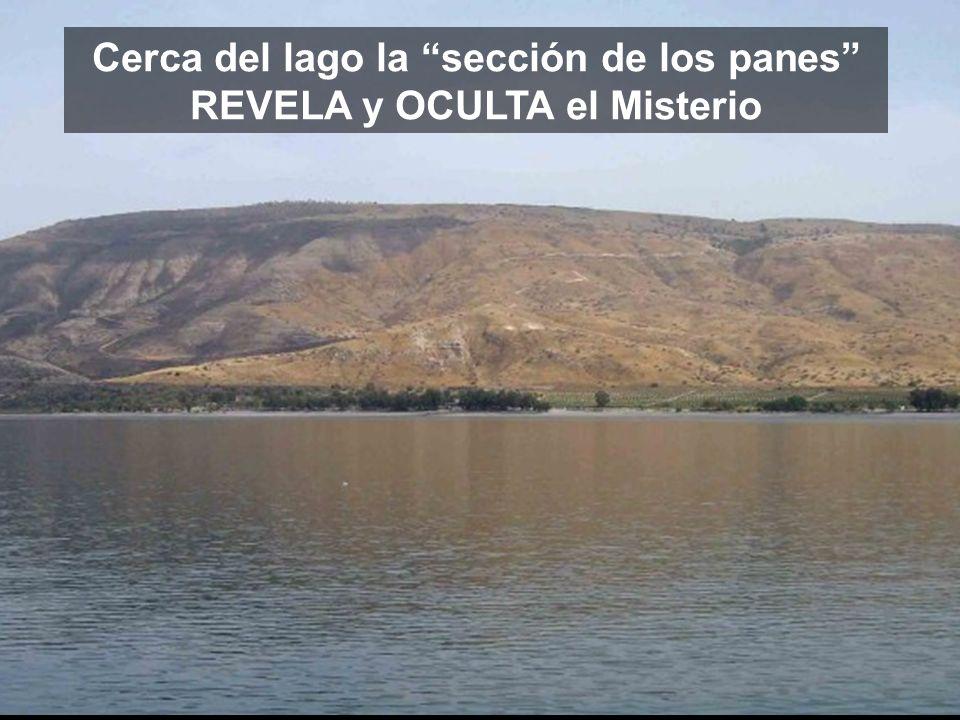 Cerca del lago la sección de los panes REVELA y OCULTA el Misterio