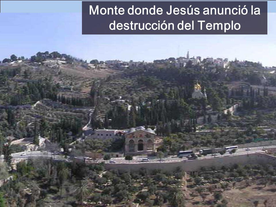 - El Dios de vivos (Dom 32) - Sufrir con perseverancia salva la VIDA (Dom 33) CRISTO REY Después de la muerte, iremos con Jesús al Paraíso (como el la