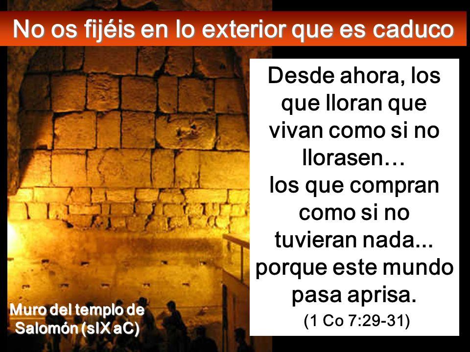 Lc 21, 5-19 En aquel tiempo, algunos ponderaban la belleza del templo, por la calidad de la piedra y los exvotos. Explanada donde estaba el Templo