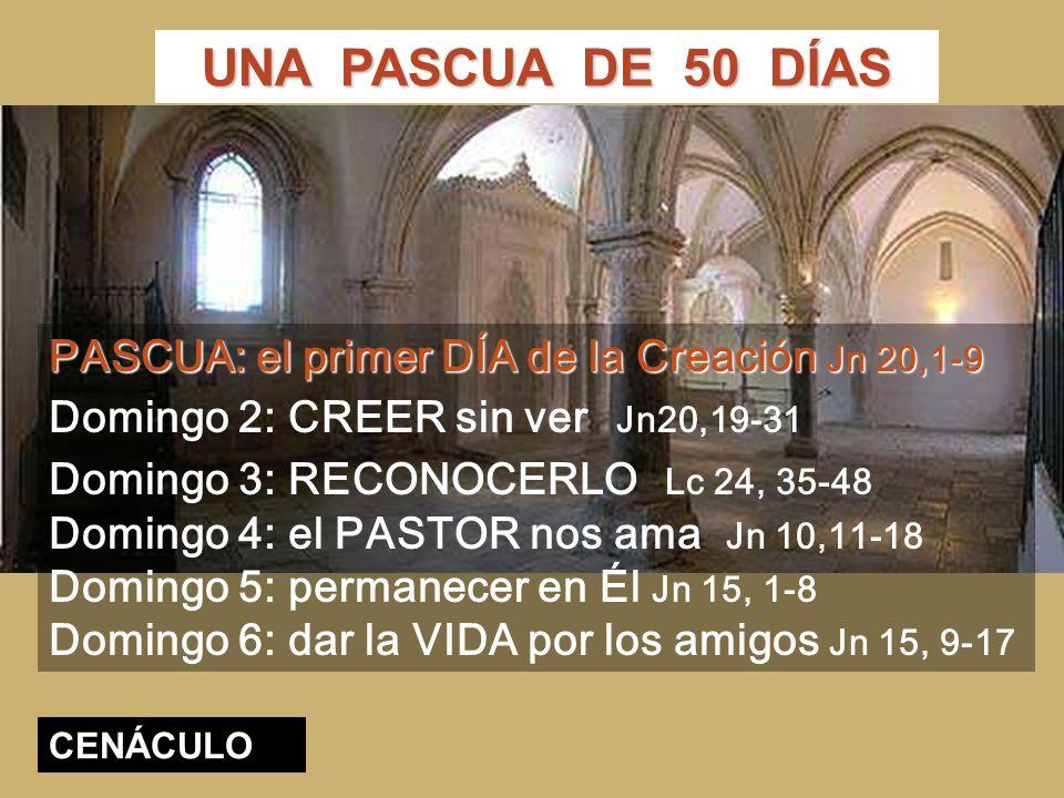 PASCUA: el primer DÍA de la Creación Jn 20,1-9 Domingo 2: CREER sin ver Jn20,19-31 Domingo 3: RECONOCERLO Lc 24, 35-48 Domingo 4: el PASTOR nos ama Jn 10,11-18 Domingo 5: permanecer en Él Jn 15, 1-8 Domingo 6: dar la VIDA por los amigos Jn 15, 9-17 UNA PASCUA DE 50 DÍAS CENÁCULO
