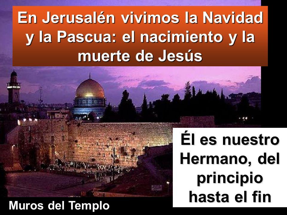 Cuando terminó, se volvieron; pero el niño Jesús se quedó en Jerusalén, sin que lo supieran sus padres.