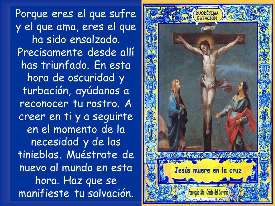 ORACIÓN Señor Jesucristo, constantemente estás siendo clavado en la cruz. Por el gran sufrimiento, y por la maldad de los hombres, el rostro de Dios,